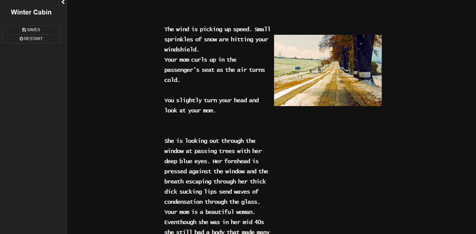 Text based erotic game