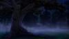 Forest_oak_tree.png